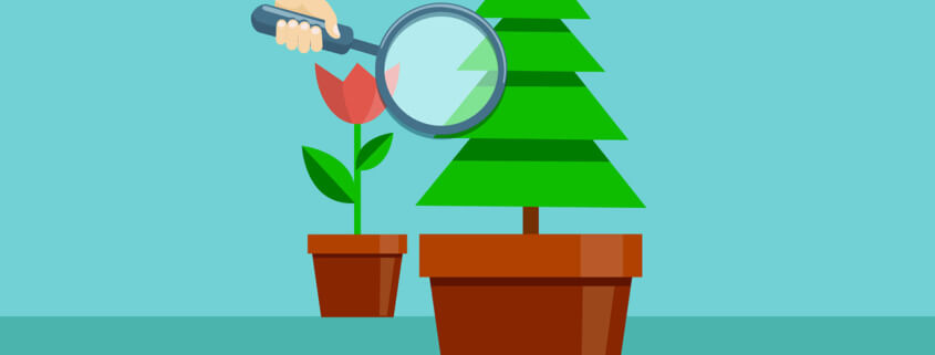 The Everlasting Benefits of Evergreen Content and Why Your Website Needs It
